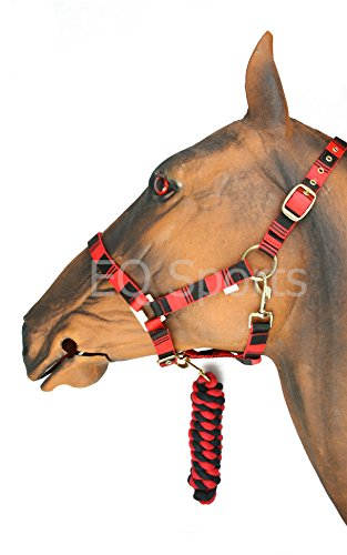 41l86zEOEML Knight Rider Two Tone Headcollar And Leadrope Set Small Pony Red/Black UK best buy Review