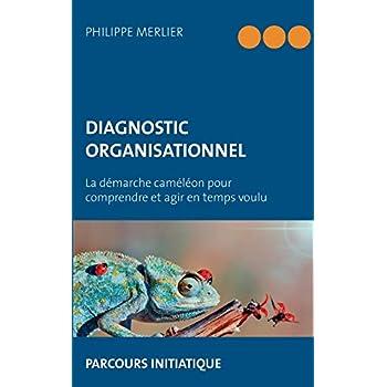 Diagnostic organisationnel : La démarche caméléon pour comprendre et agir en temps voulu