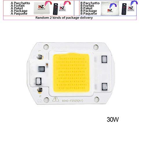 Yard Light 20 W 30 W 50 W LED Chip 220 V LED COB Leuchtmittel Chip Input IP65 Smart IC Fit für DIY LED Flutlicht LED Module Hohe Qualität 30w