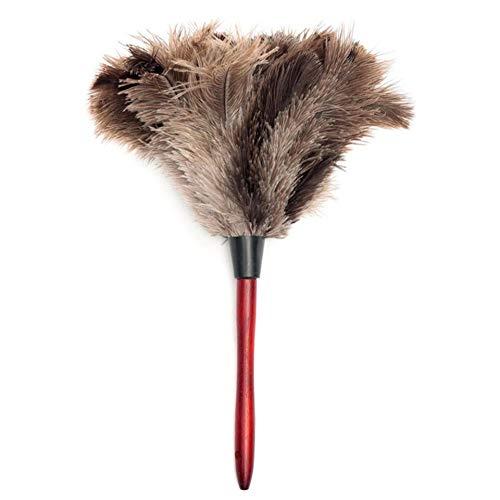 HIUGHJ Reinigungswerkzeug 1 Stücke antistatische natürliche Haar holzgriff Pinsel abstauben reinigungswerkzeug haushaltsmöbel Reiniger, grau - Grau Natürliche Pinsel