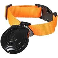 SODIAL(R) Mini Digital Camera Video Recorder Camera DVR Video Recorder dog collar for dog cat