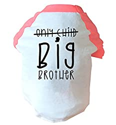 Only child big brother two toned dog vest | pink or blue | Flox Creative