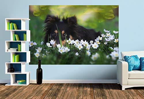 Premium Foto-Tapete Versteckspiel im Blütenmeer (verschiedene Größen) (Size M | 279 x 186 cm) Design-Tapete, Vlies-Tapete, Wand-Tapete, Wand-Dekoration, Photo-Tapete, Markenqualität von ERFURT