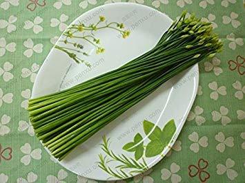 ASTONISH ERSTAUNEN SEEDS: 50 Samen/Pack, Schnittlauch, grün Bio-Gemüsegarten Balkon Bonsai Lauchsamen