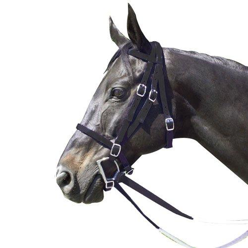 Intrepid International Nylon Race Horse Trensenzaum, 159175K, Schwarz