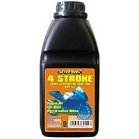 SILVERHOOK SHMD05 10w/40 Semi Synthetic 4 Stroke Oil for High Performance Bikes, 500 ml preiswert