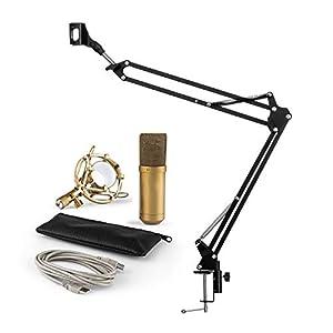 MLYDW Microfono MIC-900G – Set Per Studio Da Casa 2 Pezzi – Microfono Capacitivo USB – Supporto Microfono Pieghevole