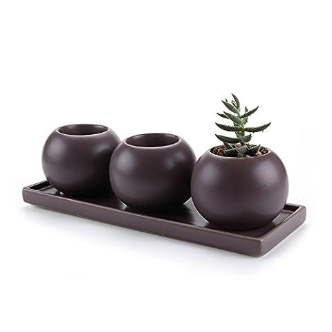 T4U Camée Double Couche Creux conception Céramique Pot Plante Récipient Pépinière Pots Succulents Cactus Plante pots Violet 3