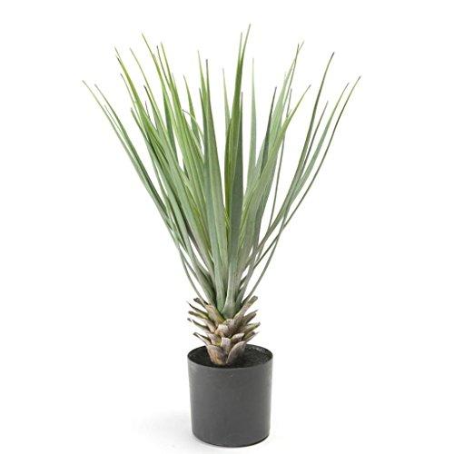 Emerald Kunstpflanze künstliche Yucca Rostrata Dekopflanze Grün 50 cm 11.634C