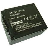 Mobilizers - Batterie de remplacement Haute Capacité pour Panasonic DMW-BLB13 / DMW-BLB13e pour Lumix G1, G2, G10, DMC-G1, DMC-GF1, DMC-GH1, DMC-GH1K, DMC-G1A, DMC-G1K, DMC-G1R DMC-G1WW, DMC-G2, DMC-G2K, DMC-G2W, DMC-G10