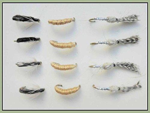 12Nymphe mouches de pêche, caenis (épouse de Vespasien), Corixa & Scieur