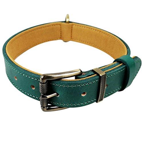 Weiches Italienisches Rindsleder (chede Hundehalsband aus echtem Leder, für Komfort und Lange Tragekragen, Rindsleder für kleine mittelgroße und große Hunde, XXL, grün)