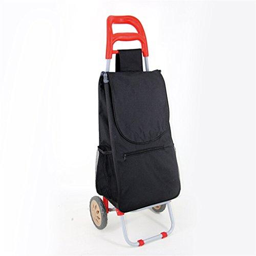 DS WagenⓇ Hand-LKW-Zug-Rod-Auto-tragbarer Supermarkt-Einkaufswagen-zusammenklappbarer Eisen-Schlauch-Laufkatze-Haushalts-wasserdichte Tasche Senioren-kleiner Wagen 25 Kilogramm-Last #