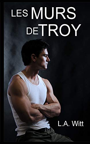 Les murs de Troy