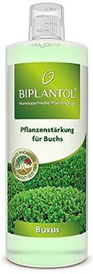 Biplantol Buxus, 250 ml von Biplantol auf Du und dein Garten