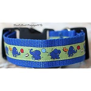 Hundehalsband der kleine, blaue