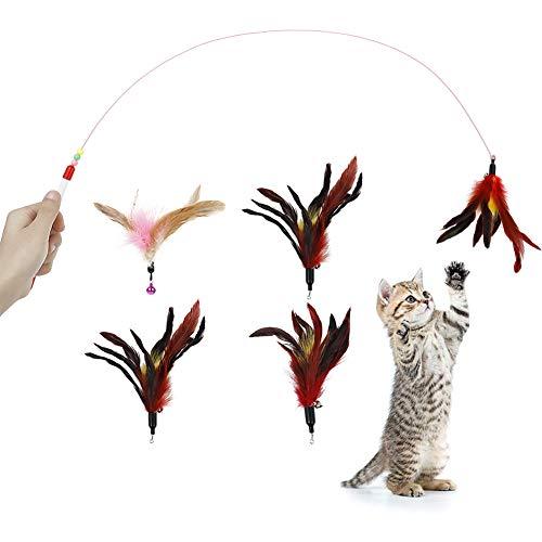 dgaf&bae Katzenspielzeug Interaktives Spielzeug mit Federn, 5Pcs Katzenangel Wurm Katzenspielzeug Wurm Teaser Zauberstab Spielzeug