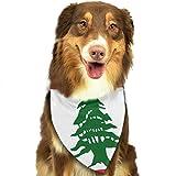 Rghkjlp Dogs Bandana Collars Lebanese Flag Pets Triangle Neckerchief Puppy Bibs Scarfs Cats Scarfs Towel