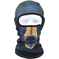 AHELMET A Prueba de Viento Pasamontañas Máscara de esquí Clima frío Mascarilla Capucha Última retención térmica Al Aire Libre Cómodo Calentador de Cuello de Motocicleta (Color : Picture8)