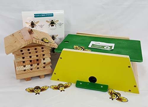 Bee Gift Box - a great gift for gardeners and Nature lovers