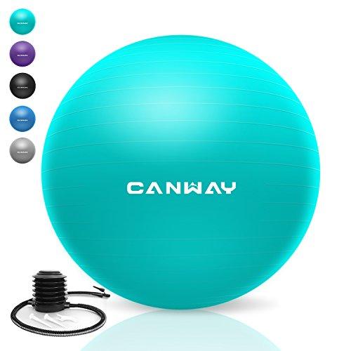 CANWAY Gymnastikball Gymnastic Ball Pezziball Gymnastikbälle Rutschfest mit Luftpumpe Maximalbelastbarkeit bis zu 700kg in den Größen 65cm (Hellblau)