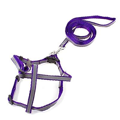 Sourcingmap Verstellbare Reflektierende Hundehalsband Halfter Gurt Leine, Violett/Grau