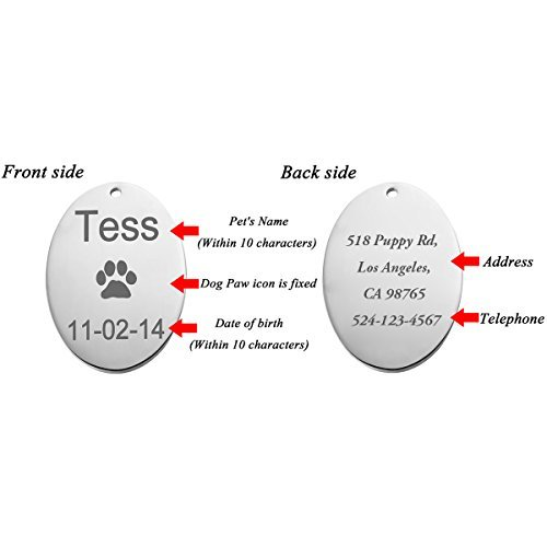 HOUSWEETY Personalisiert Haustier ID Tag Hund Tag MIT Gravur Service Hundemarke Anhaenger aus Edelstahl Silber - 5