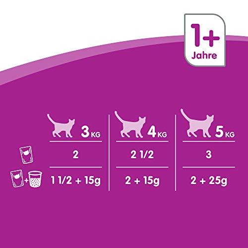 Whiskas Katzenfutter 1+ für erwachsene Katzen – saftige Geflügel-Auswahl in Sauce, 3 Geschmacksrichtungen / 84 Portionsbeutel (84 x 100 g) - 4