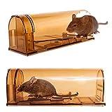 Piège à souris vivante