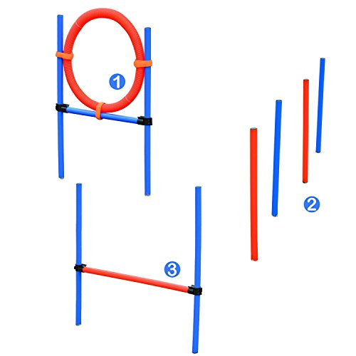 PawHut Set Agility Entrenamiento Perros Agilidad Salto Polo Tunel Equipo Azul Rojo NUE