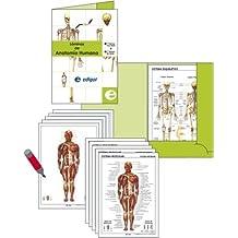 Carpeta Láminas de Anatomía