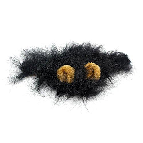 Yogogo Pelzigen Haustier Hut Kostüm Lion Mähne Perücke für Katze Halloween Dress Up mit Ohren Party (Schwarz)