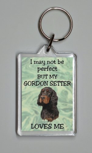 gordon-setter-keyring-i-may-not-be-perfect-but-my-gordon-setter-loves-me