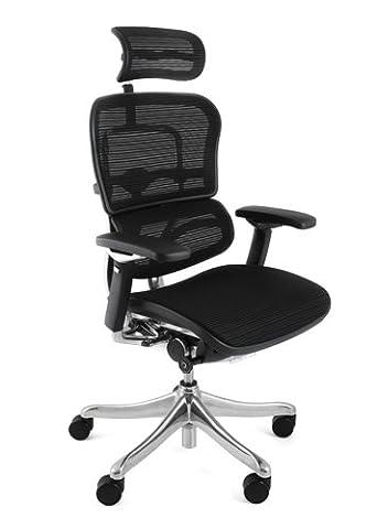 Ergohuman Plus Mesh Office Chair with headrest