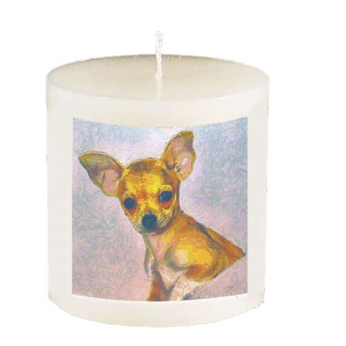 chihuahua-belle-aroma-a-762-cm