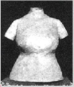 HOW TO MAKE A HOMEMADE DRESSFORM of Your EXACT Body Shape & Size! (sewing sew dress form Kindle download e-book ebook vintage) by [Northern Lights Vintage]