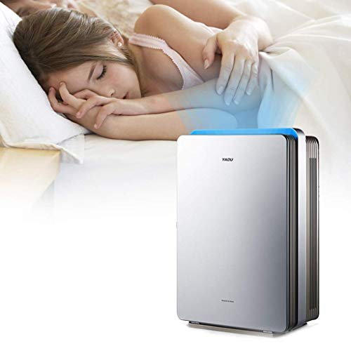 41lGPcvU44L. SS500  - Daxiong Air purifier intelligent home bedroom office in addition to formaldehyde smog PM2.5 smoke second-hand smoke