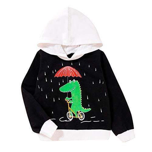 Dasongff Baby Kinder Nette Karikatur Pullover Dinosaurier DruckenHoodie Toddler Jungen Kapuzenpullover Casual Sport Sweatshirt
