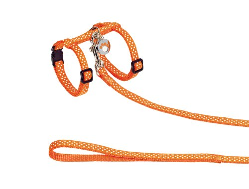 nobby-harnais-laisse-motif-pois-pour-chat-orange-10-mm-30-a-35-cm-120-cm