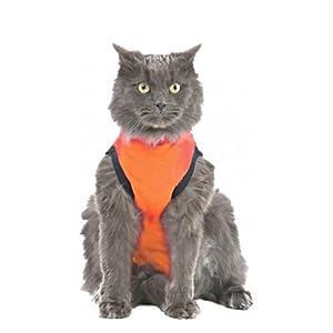 Medical Pet Shirt Gilet Orange Chat XXS