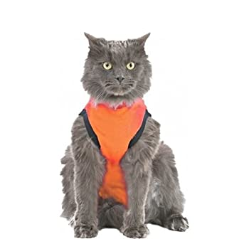 Medical Pet Shirt Gilet Orange Chat XXS