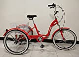 Best Adulte Tricycles - Scout Tricycle Adulte, Cadre en Alliage, Pliable, 6 Review