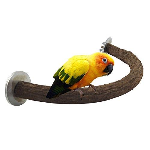 Greenlans Wood U Form Vogelkäfig Sitzstange für Papagei Budgie Parakeet Cockatiel conure Finch Lovebird grau au-Cockatoo-Spielzeug