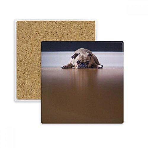 DIYthinker Hund Tier Room Floor Bild-Quadrat Coaster-Schalen-Becher-Halter Absorbent Stein für Getränke 2ST Geschenk Mehrfarbig