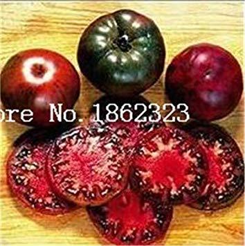 Potseed . 100Pcs Schwarz Krim Tomate Russina Erbstück fein strukturiertes Fleisch Große Tomatenpflanzen Chinesische Gemüsepflanze für Hausgarten: 9