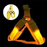 LED Licht Hundegeschirr Einstellbar Leuchtend Pastell Brustgeschirre Laufgeschirre Vest Sicherheits Geschirr USB Aufladbar Harness Gassigehen bei Nacht für Kleine Mittlere Grosse Hunde (L, gelb)