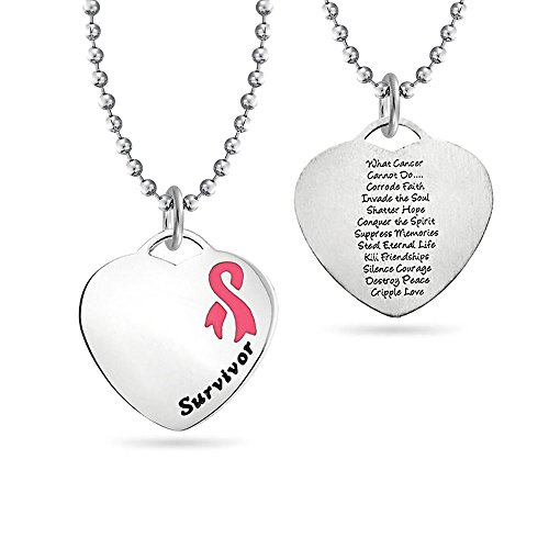 rm Pink Ribbon Brustkrebsüberlebender Anhänger Gedicht Edelstahl Halskette Für Damen 18 Zoll ()