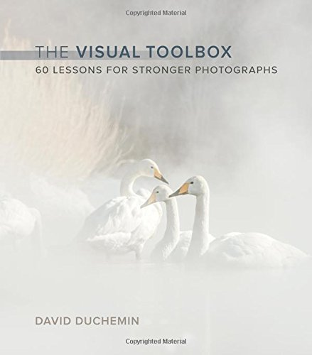 The Visual Toolbox: 60 Lessons for Stronger Photographs (Voices That Matter) por David DuChemin