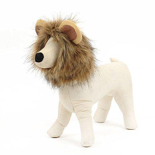 COL PETTI PET Hat Löwenkopf Gefälschte Ohren Dress Up PET Lustige Hat Halloween-Urlaub Dress Up