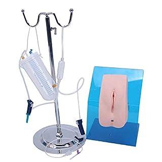 DDT Männlich Weiblich Katheterisierung Simulator Modell Tragbar Katheterisierung Modell Urin Fähigkeiten Ausbildung Genital Ausbildung Modell,Female